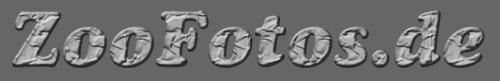 Zoofotos.de Logo